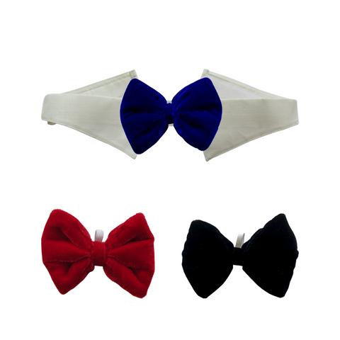 Black, Blue and Red Velvet Bows with Collar