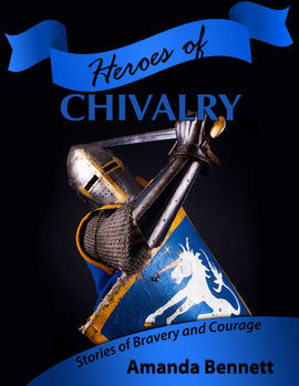 Heroes of Chivalry