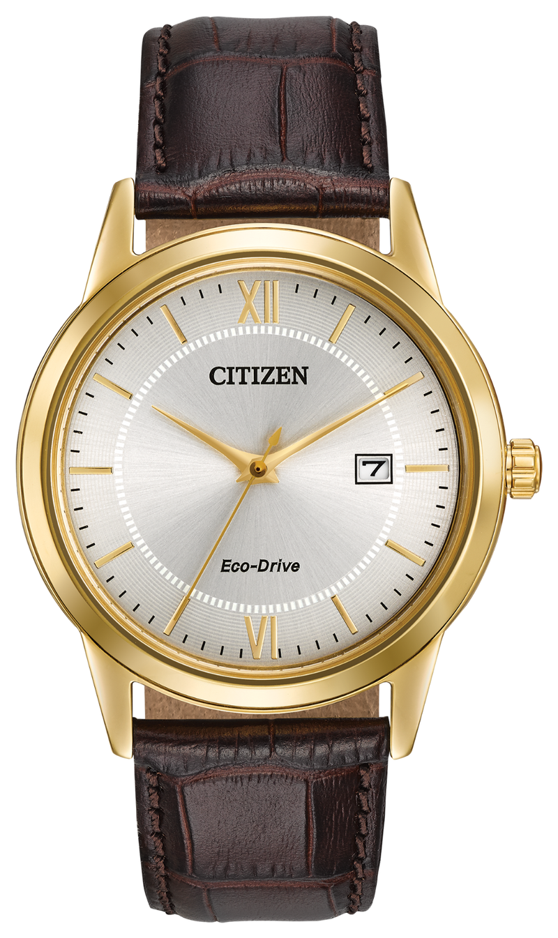 Citizen Men's Eco-Drive Corso Watch