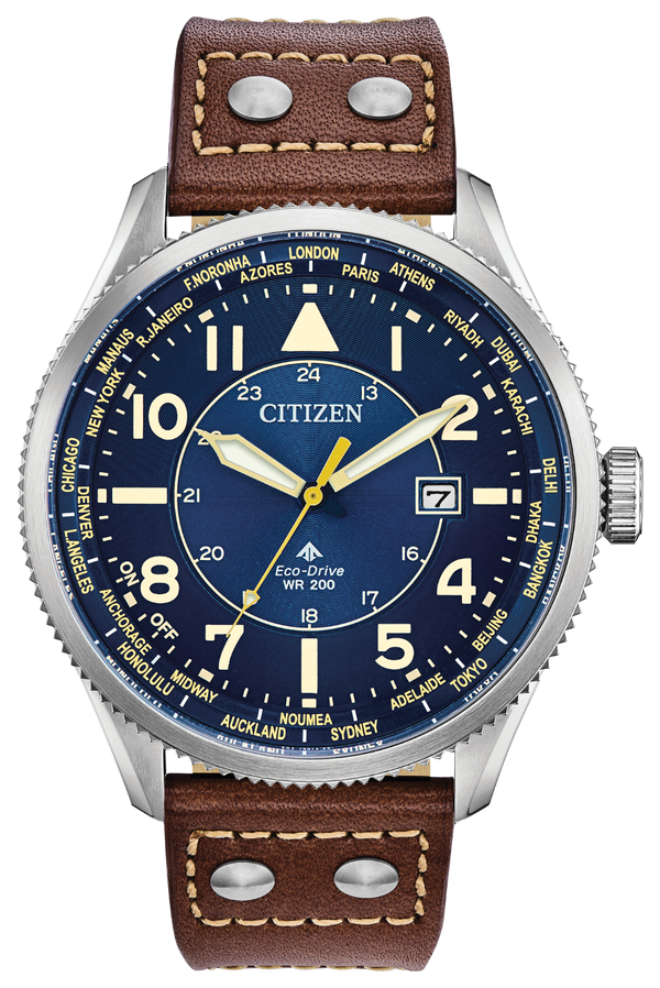 Citizen Men's Eco-Drive Promaster Nighthawk Watch