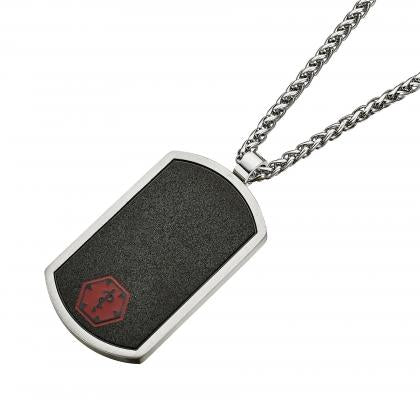 Alpine Stainless Steel Pendant w/ Chain