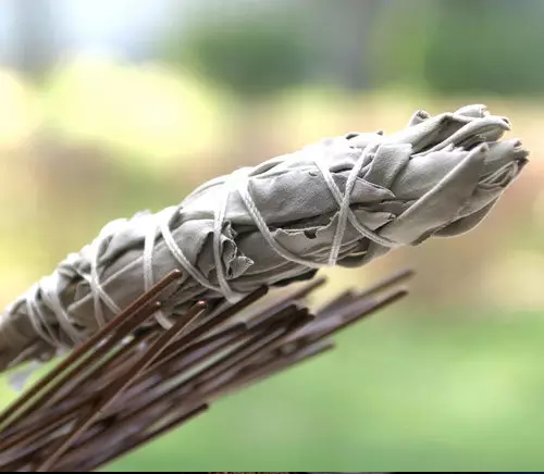 Add bundles of sage to a campfire to keep mosquitoes away.
