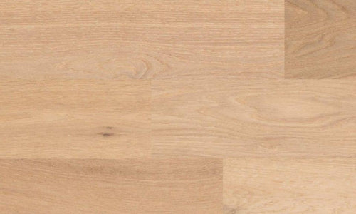 Oak Northern light hardwood