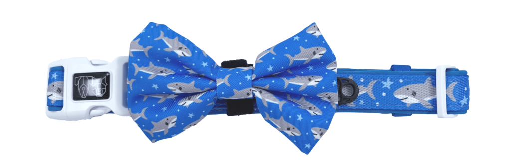 Collar w/Bow tie- GREAT WHITE