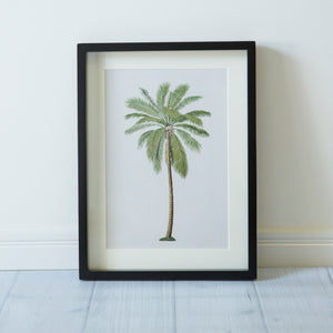 Palm Island- Set of 4 Premium Framed Glass Artwork