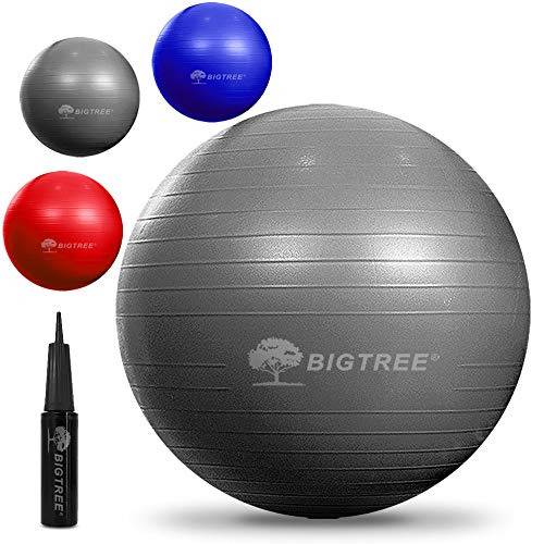 Bigtree Exercise Ball Extra Thick Yoga Ball Chair, Anti-Burst Heavy Duty Stability Ball, Birthing Ball with Quick Pump (Office & Home & Gym) (Silver, 55CM)