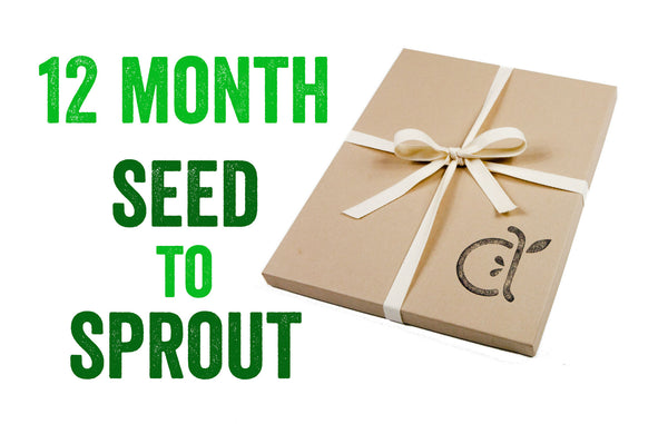 Seed to Sprout Package