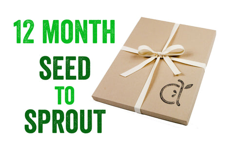 12-Month Seed to Sprout Package