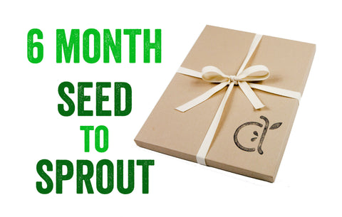 6-Month Seed to Sprout Package