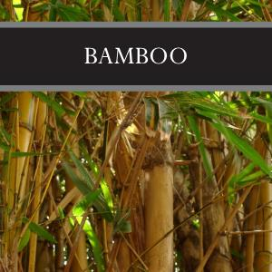 Bamboo Reed Diffuser Refill