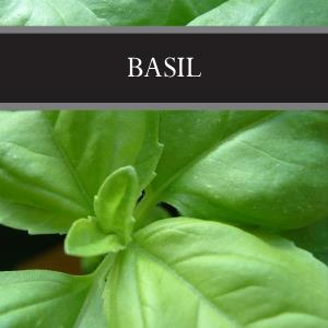 Basil Room Spray