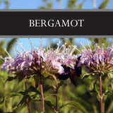 Bergamot Room Spray
