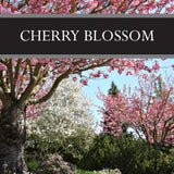 Cherry Blossom 3-Pack Bar Soap