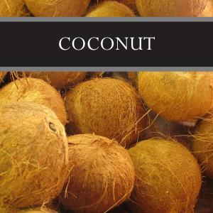 Coconut Reed Diffuser Refill