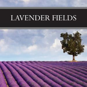 Lavender Fields Wax Tart