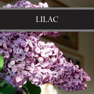 Lilac Room Spray