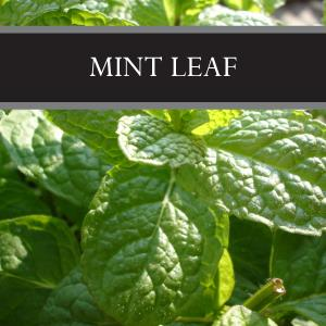 Mint Leaf Wax Tart