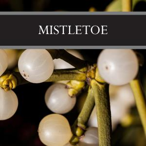 Mistletoe 3-Pack Bar Soap