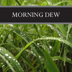 Morning Dew Candle