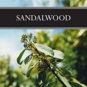 Sandalwood 3-Pack Bar Soap
