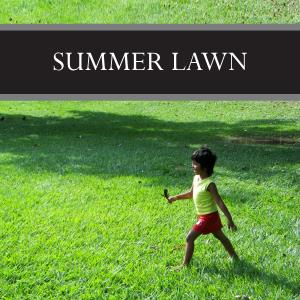 Summer Lawn Wax Tart