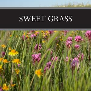 Sweet Grass Wax Tart