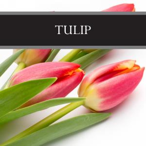 Tulip 3-Pack Bar Soap