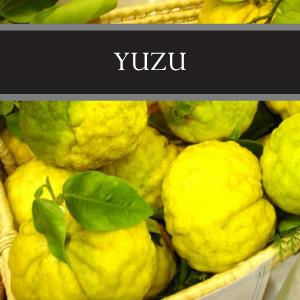 Yuzu 3-Pack Bar Soap