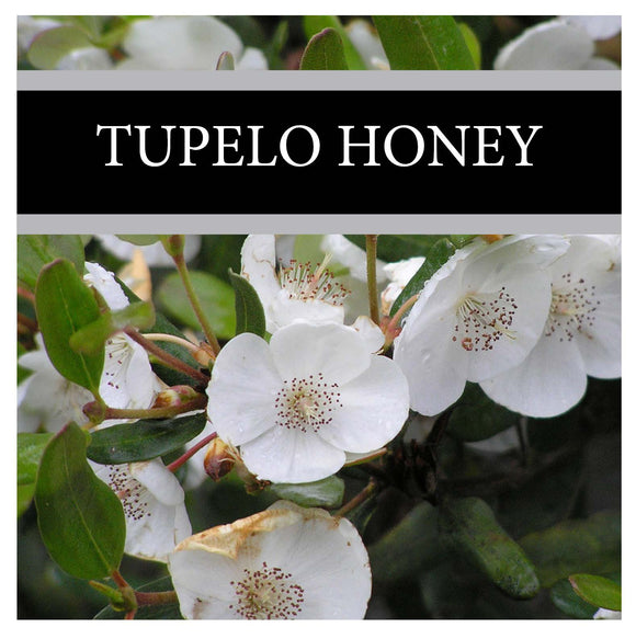 Tupelo Honey 3-Pack Bar Soap