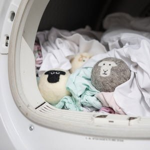 Little Beau Sheep Wollen Dyer Balls in Dryer