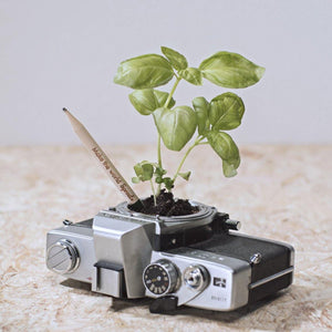 Sprout BloomYourMessage Growing Pencil in Camera display