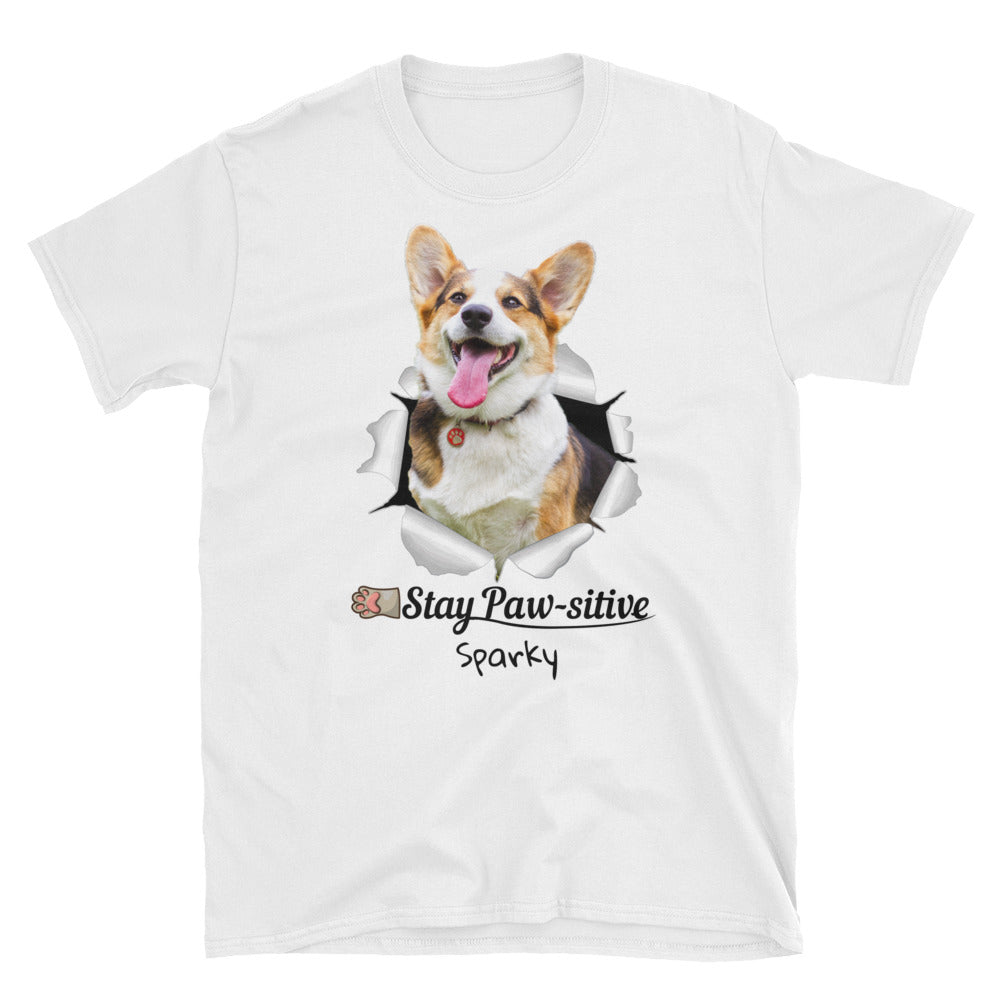pet-on-shirt - Stay Paw-sitive! - Pet On Shirt - Pet Designs