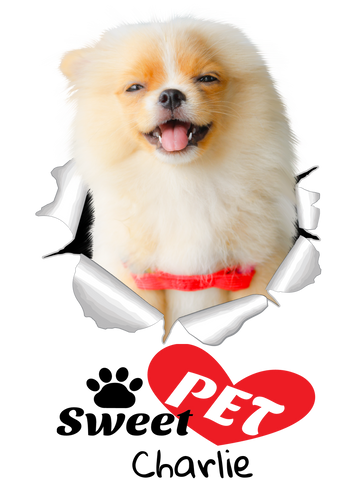 pet-on-shirt - Sweet Pet! - Pet On Shirt - Pet Designs