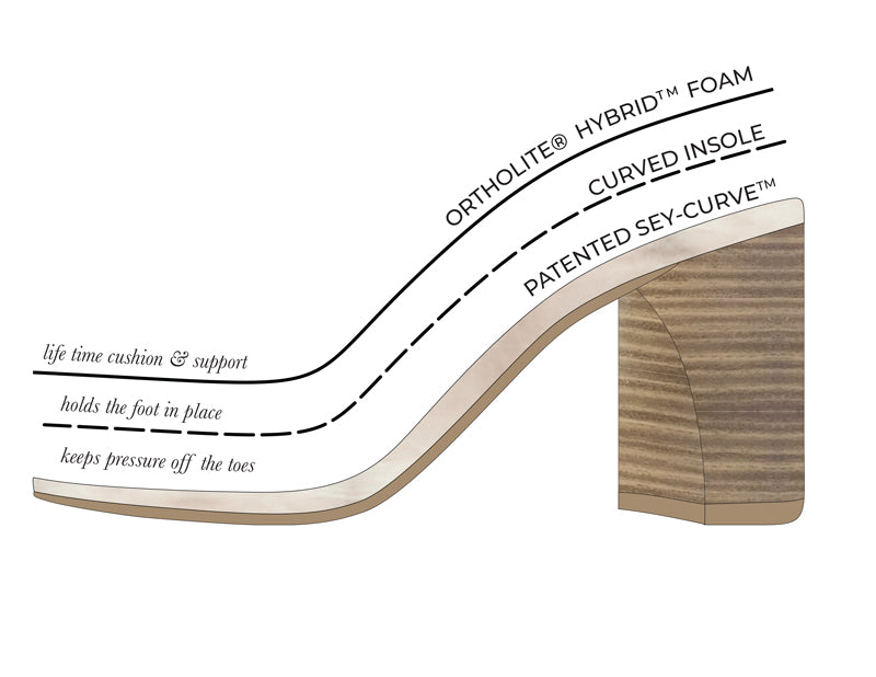 Anatomy of a shoe infographic