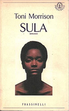 Load image into Gallery viewer, Pre order November. Sula by Toni Morrison with artwork by Ines Di Folco.