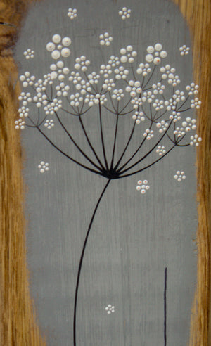 Small Cow Parsley large flower head slate grey live edge wood