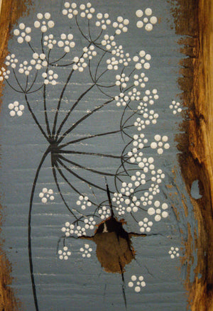 Small cow parsley large flower head grey blue reclaimed wood