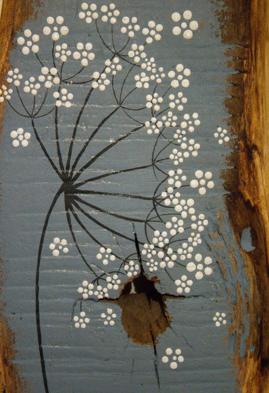 Small cow parsley large flower head grey blue reclaimed wood painting closer up