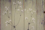Hedge Bedstraw sage green / grey reclaimed wooden boards painting close up