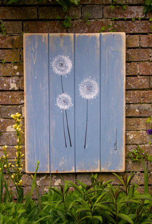 Dandelions soft grey blue / light grey reclaimed wooden boards painting outside