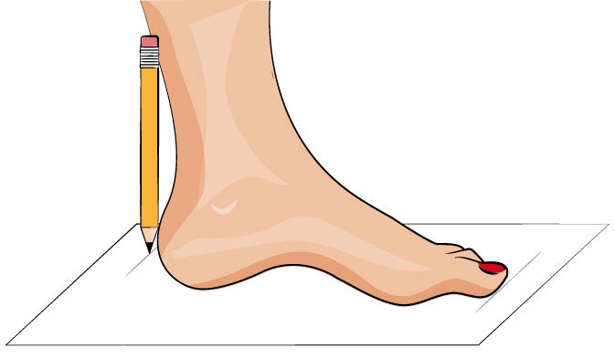 How to measure for your shoe size diagram