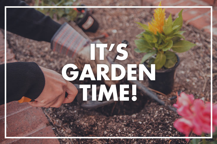 Springtime Means Garden Time (And some exciting news!)