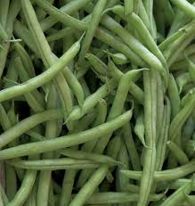 BEAN - KENTUCKY BLUE BEAN (POLE BEAN)