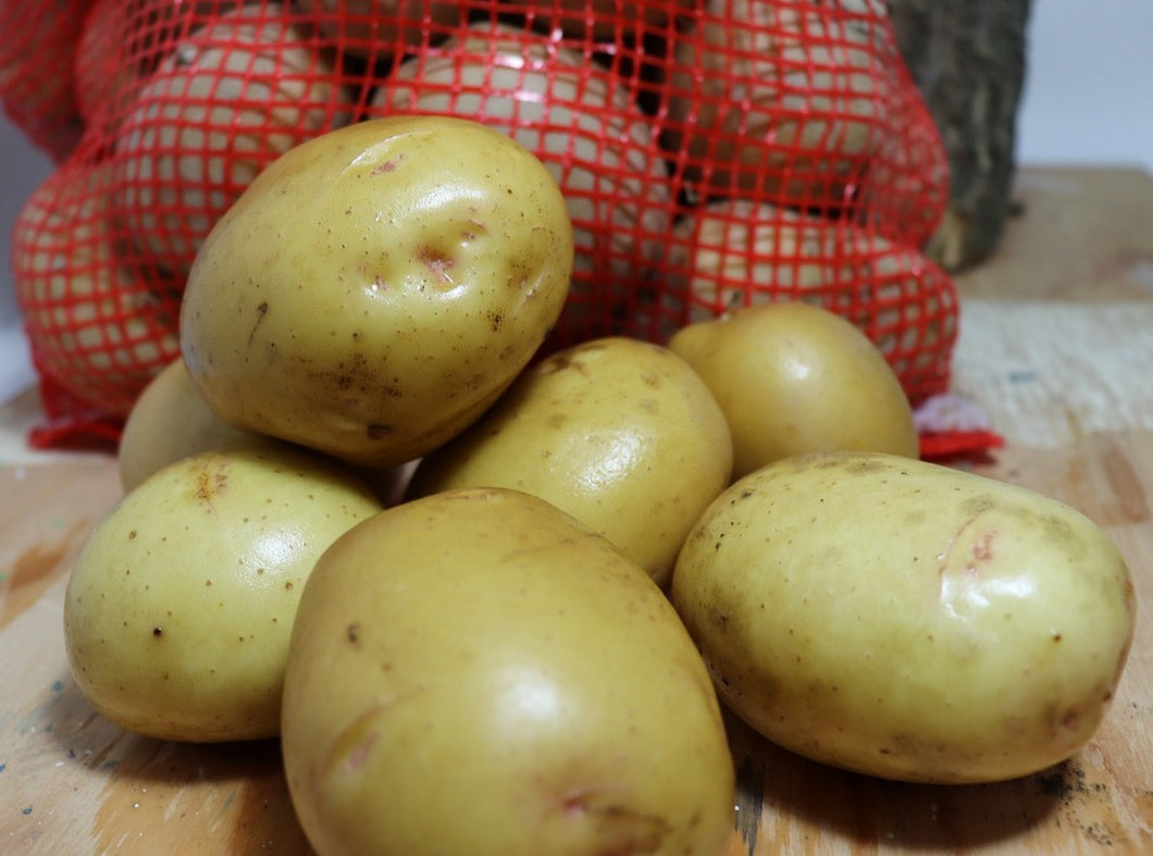 Blueberry Patch Farms - Yukon Gold Potatoes -PICK UP ONLY