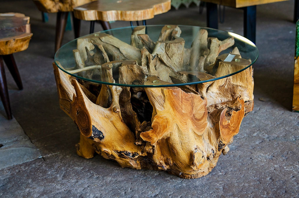 Round Tremon Root Table With Glass