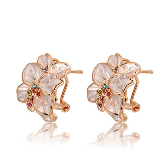 Elegant Ladies Earrings Crystals for Women