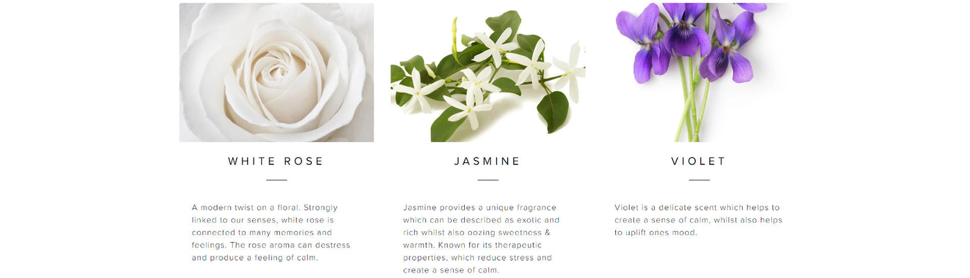Palm Beach White Rose & Jasmine Collection