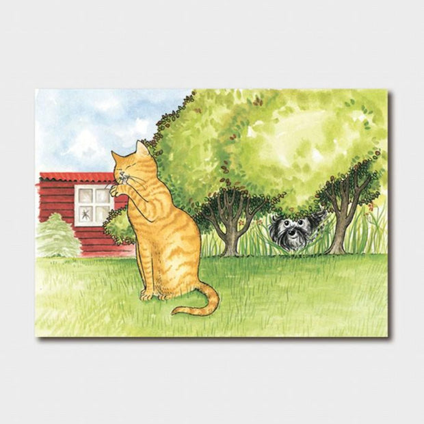 Hairy Maclary Scattercat Card