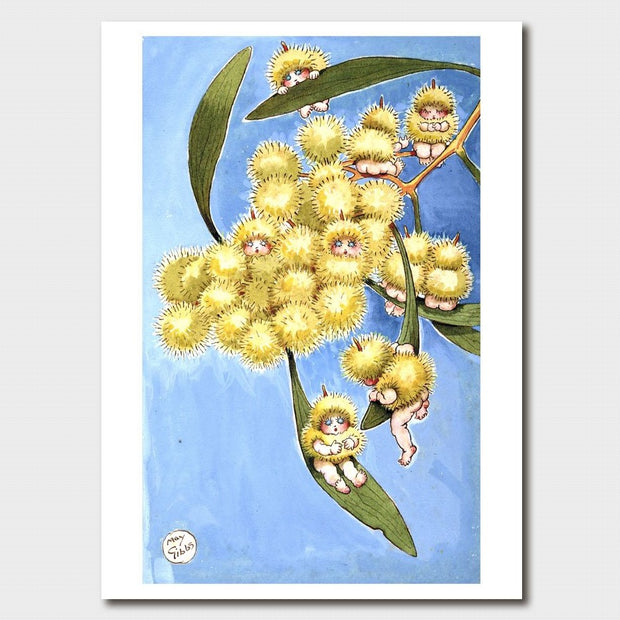'Wattle Babies' Single Sheet Print Card