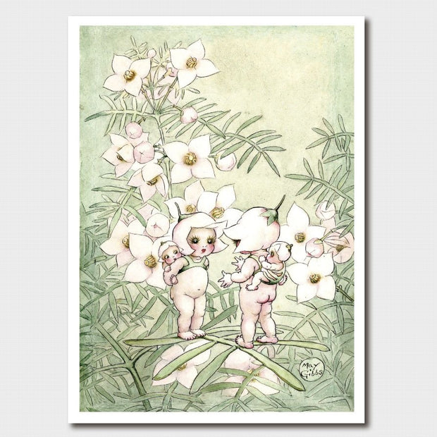 'A Little Pale Pink Gossip' Gumnut Babies Card